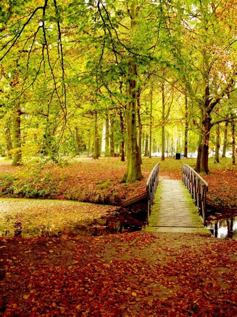 12 Places to See Fall Colors in Europe - Trover Blog