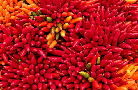 Scoville Scale for Peppers and Other Hot Chemicals
